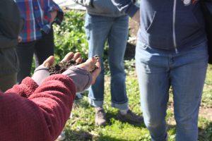 Garden educator network